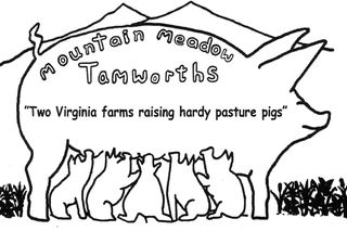 Mountain Meadow Tamworths — New Castle & Floyd, Virginia